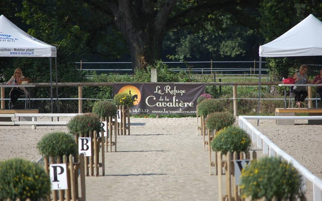 Retrouvez tous vos poneys et chevaux préférés dès le lundi 17 Août !