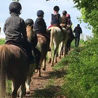 le centre équestre le cavaletti Nivernais organise des stages d'équitation pendant les vacances scolaires, près de Nevers dans la Nièvre